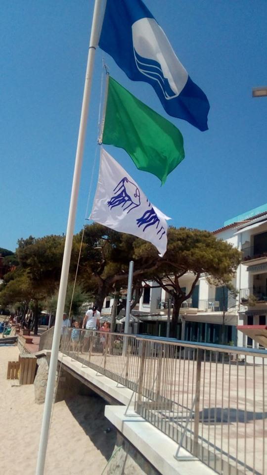 oneja la bandera per presència de meduses a Llafranc i Tamariu