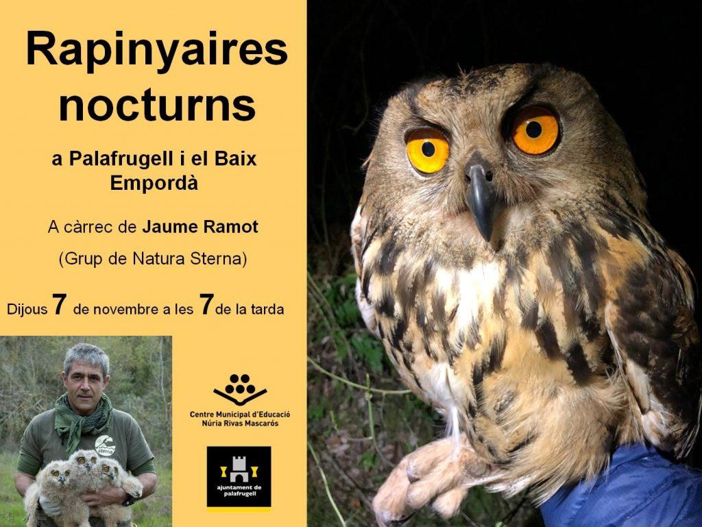 Jaume Remot i les aus nocturnes rapinyaires
