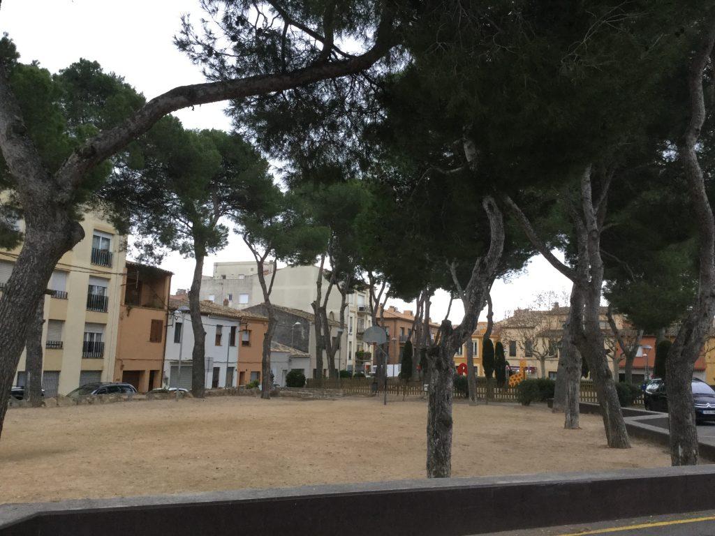 Talen 4 pins a la plaça d'en Camp d'en Prats