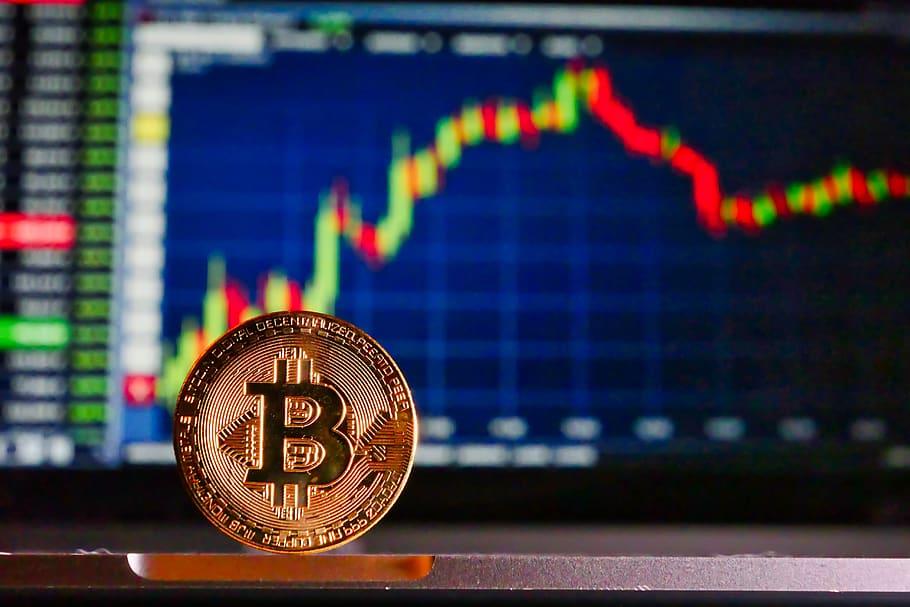 Sofia Liceras explica què és el Bitcoin