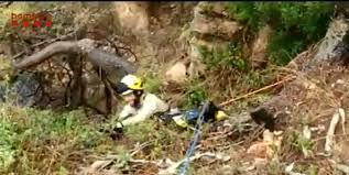 rescaten un cadell de gos a Tamariu