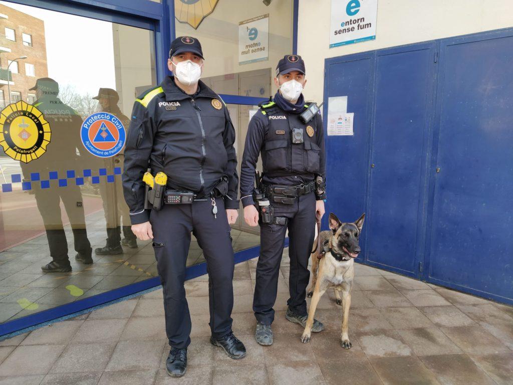 La unitat canina de la Policia de Palafrugell ja mossega